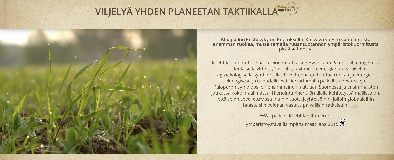 kaura, luomukaura, Knehtilä, Knehtilän luomutila, luomu, luomuviljely, kiertotalous, ekologisuus, ilmasto, ilmastoystävällinen ruoka, suomalainen, kotimainen, gluteeniton,