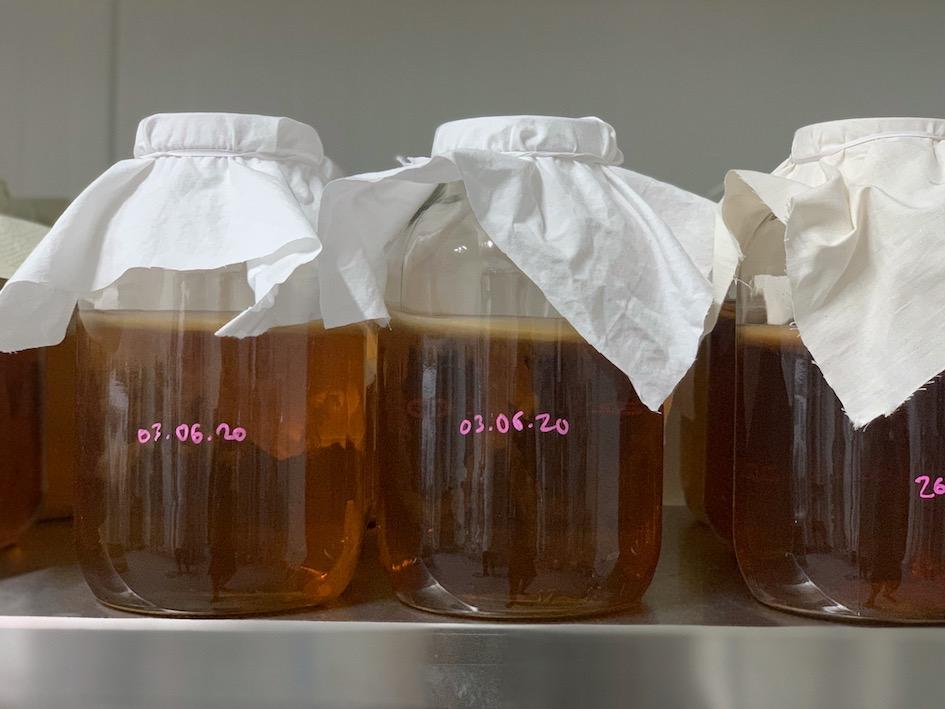 kombucha, fermentointi, maitohappobakteerit, pastörointi, pienpanimo, Roihuvuoren virvoitusjuomatehdas, The Good Guys Kombucha, Arctic Kombucha,
